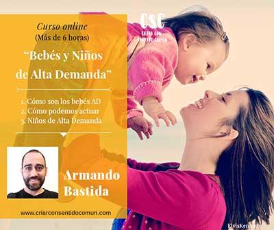 curso sobre bebés de alta demanda