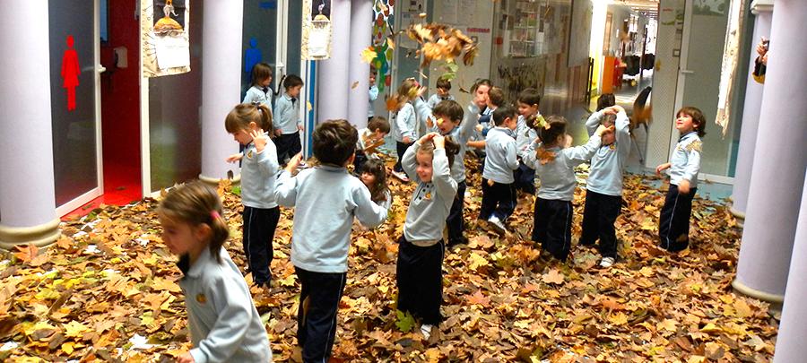 Escuela infantil Patosuca