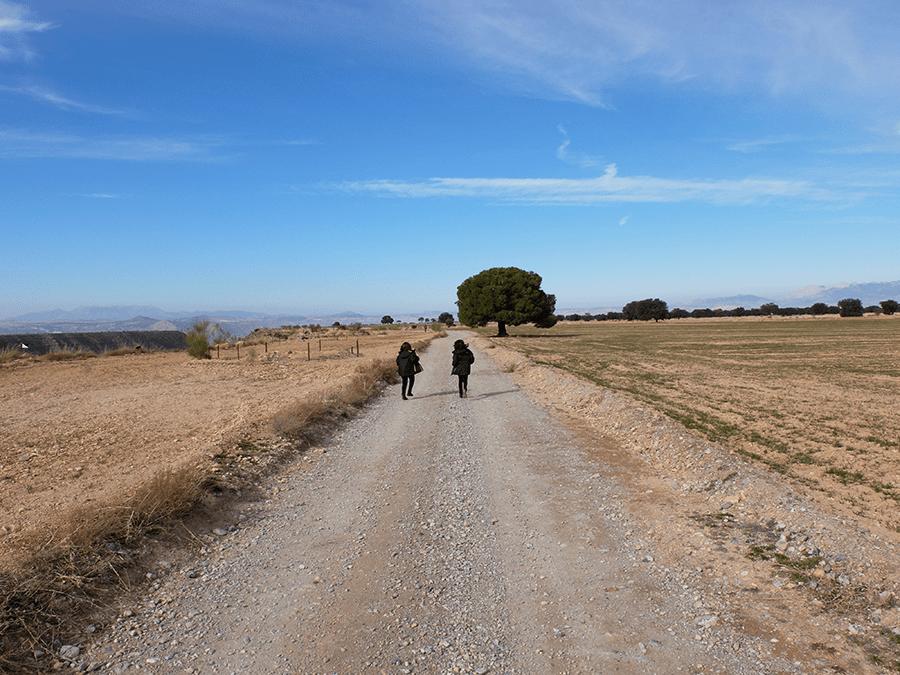 ruta paraje de Olivares Gorafe