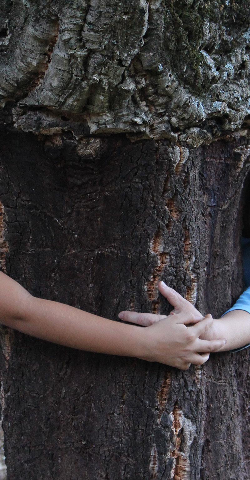 actividades en la naturaleza para disfrutar con niños