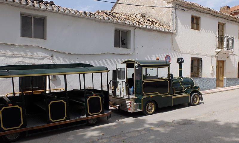 tren visita cuevas de Píñar