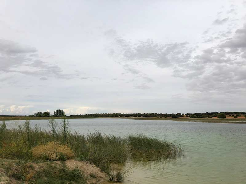la laguna blanca