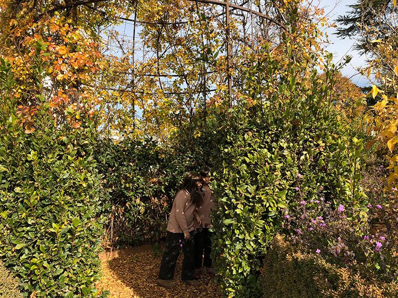 jardines para disfrutar de Granada