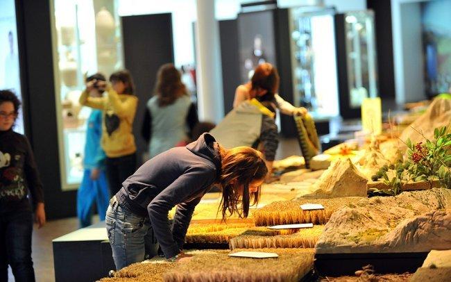 viajeros del tiempo en el Museo Memoria de Andalucía