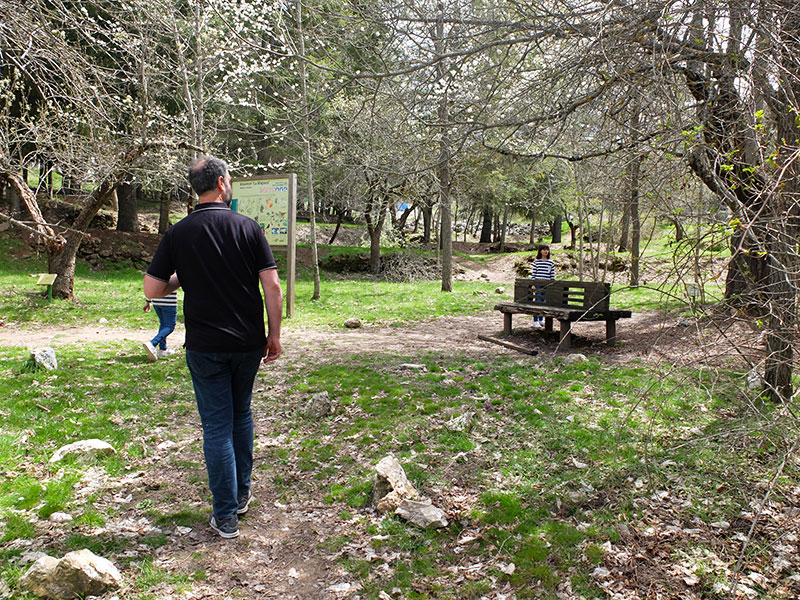 arboretum Alfacar