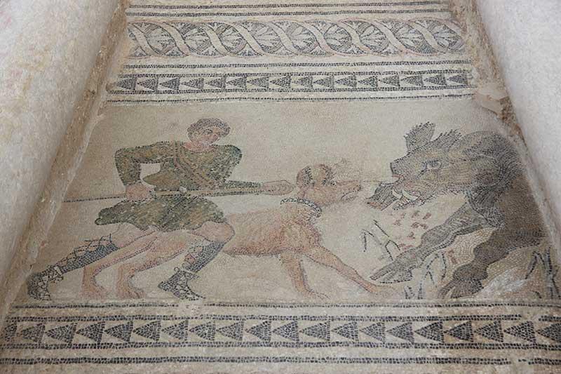 mosaico villa romana Salar