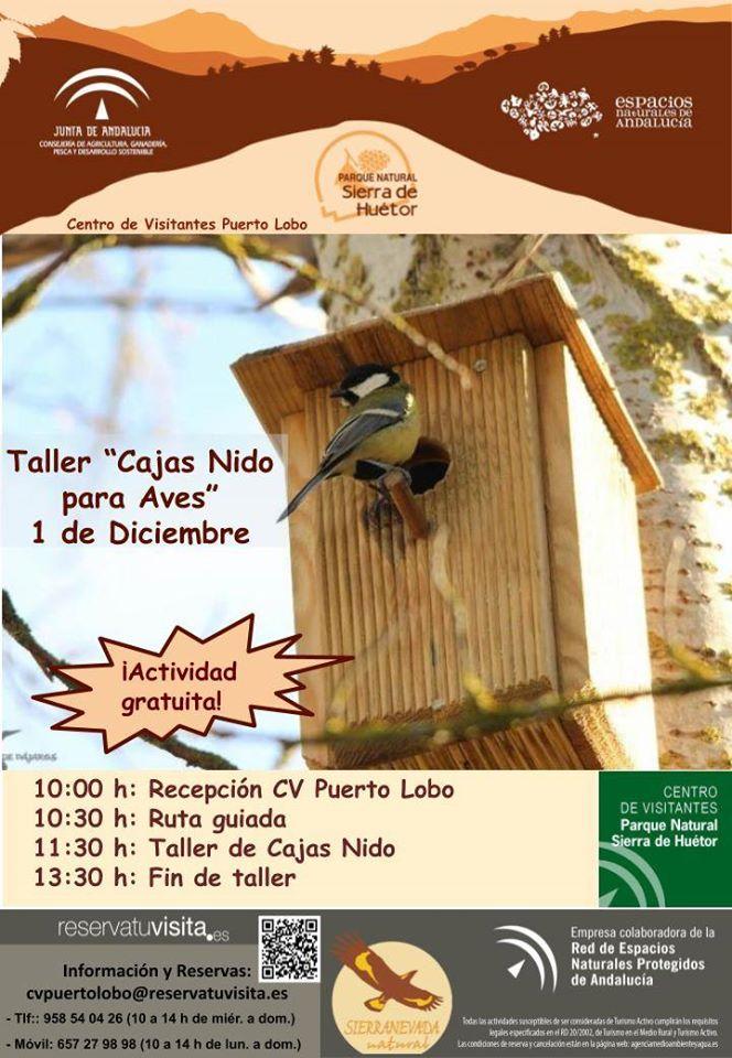 taller cajas nido Granada