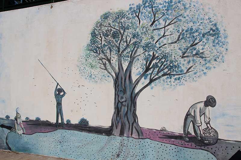 mural cooperativa San Antonio