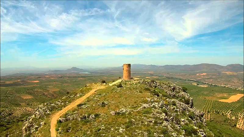 Atalaya Cogollos Vega