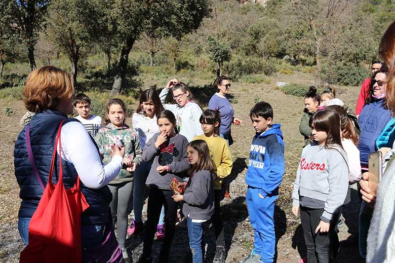 turismo familiar Nívar tren patrimonio