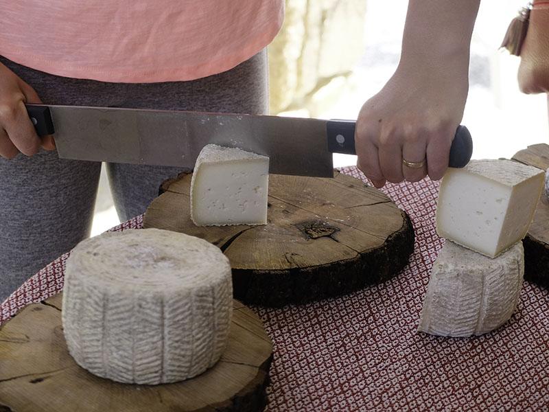 degustación queso ecológico