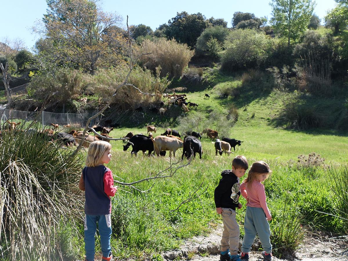 entorno Beas Granada naturaleza