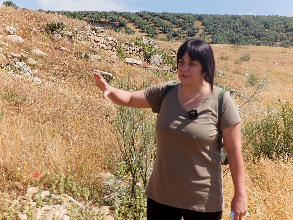 Guía turística Algarinejo