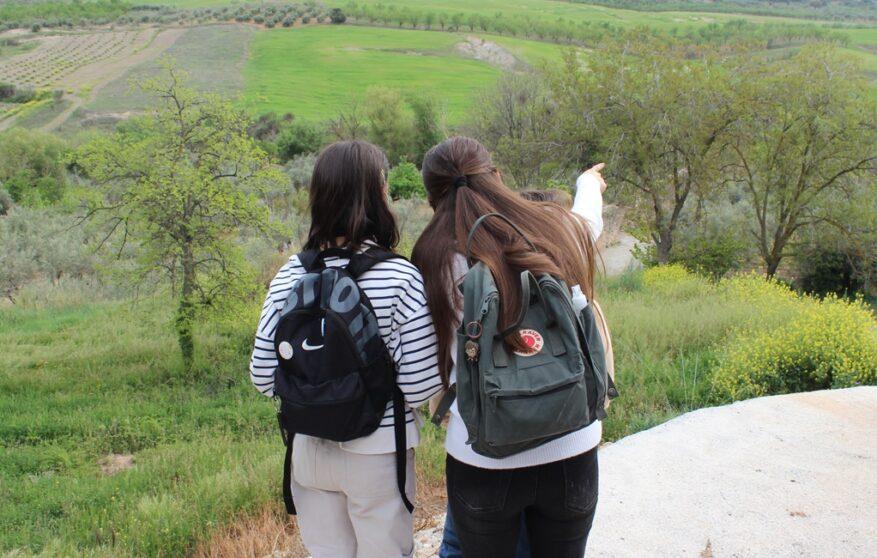 Un paseo por Calicasas