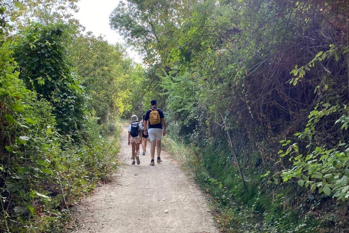 Camino Del Río Beas